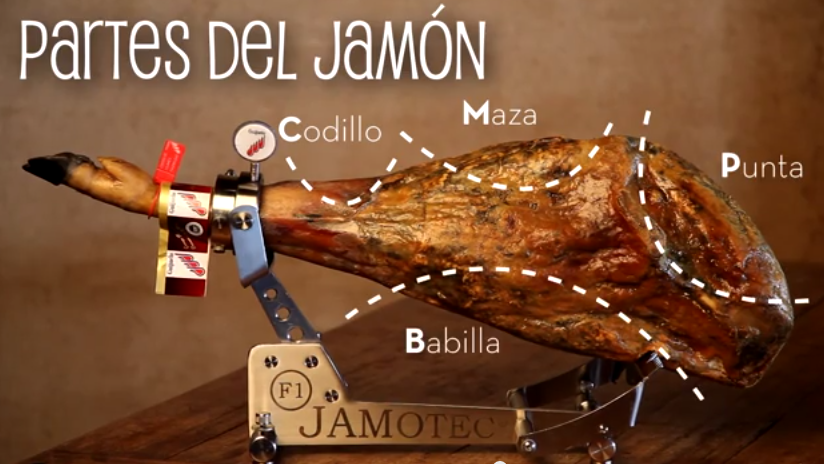 partes del jamon