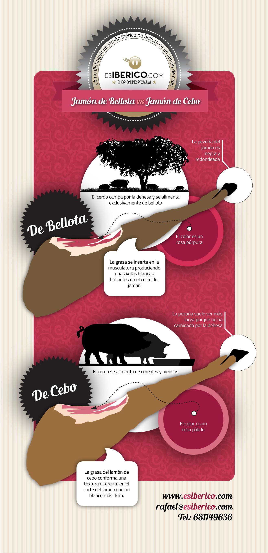jamón bellota vs jamón cebo
